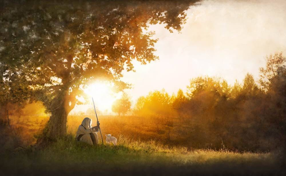 Jesus sits under a tree on a calm hill.
