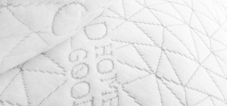 Coop Home Goods pillow closeup shot