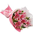 BF Special Pink Lily