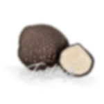<p><strong>Truffles: Autumn Treasure</strong></p>