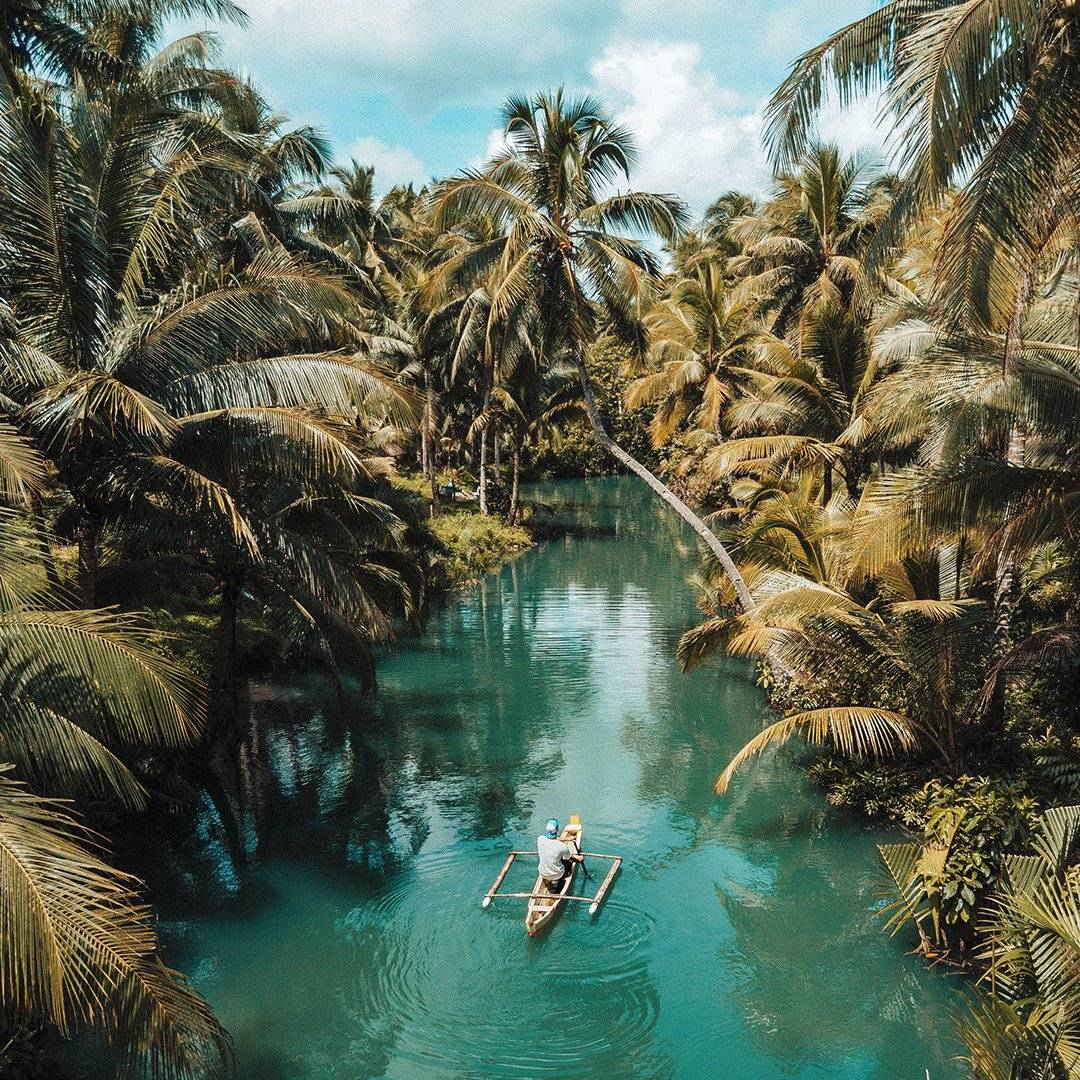 Man rowing down river in tropical setting