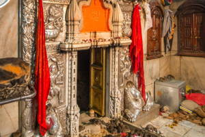 Guided tour of the rat temple in Bikaner