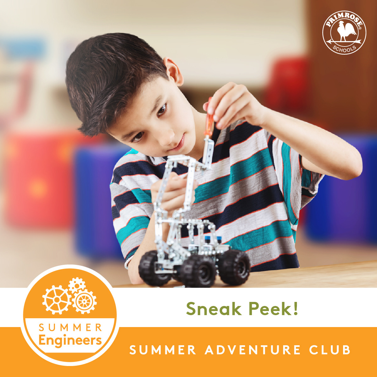 Primrose Summer Camp; Primrose at The Park summer camp, School age summer camp, primrose summer, Morrisville Summer Camp