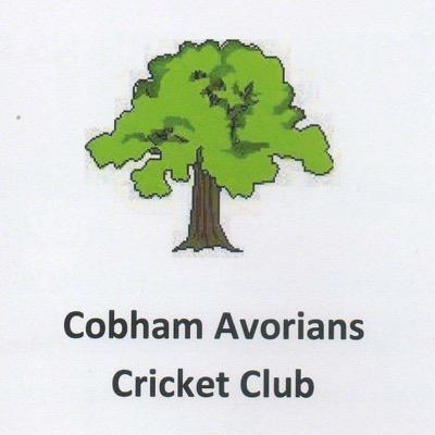 Cobham Avorians Cricket Club Logo