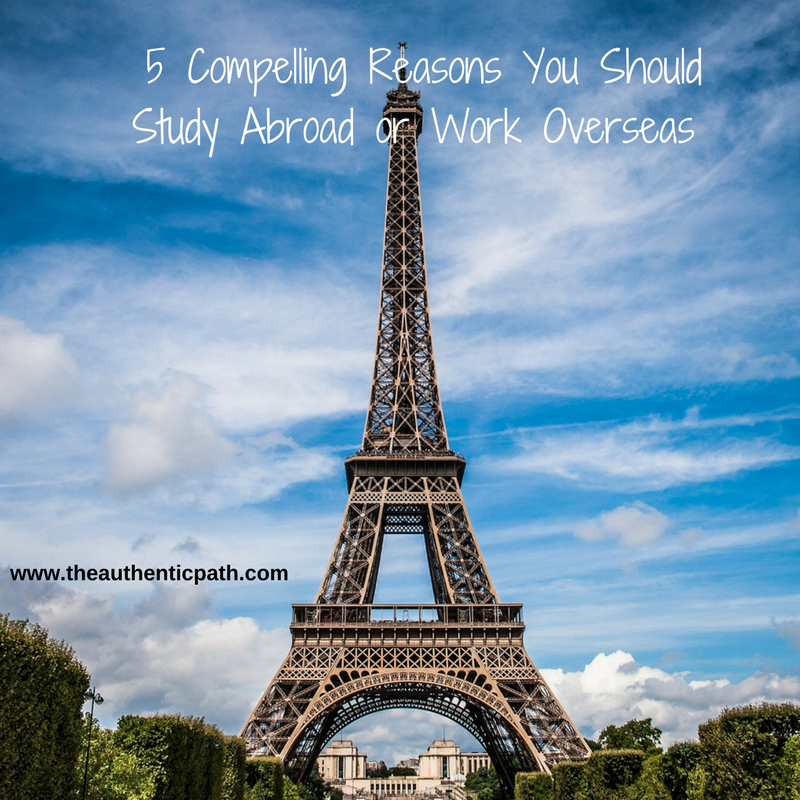 5 Compelling Reason You Should Study Abroad.png