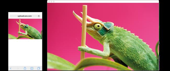 Landscape-oriented image resized on smartphone