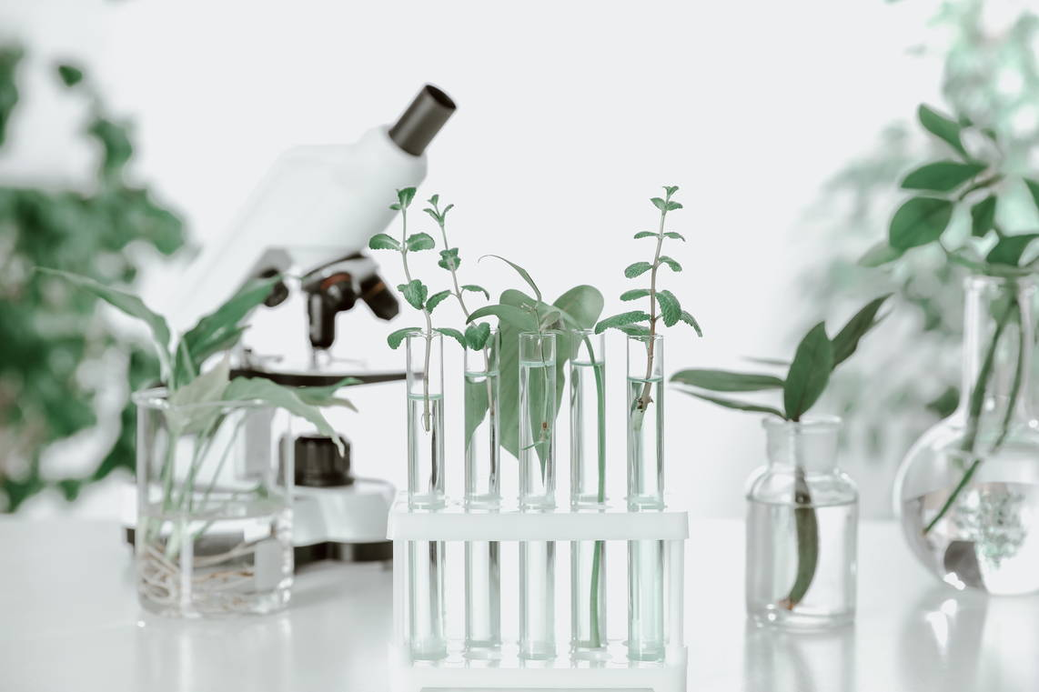 Tozaime - phytoscience set of test tubes with plants and microscope