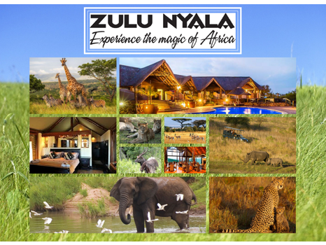 Experience The Magic Of Africa