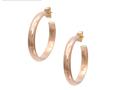 Taber Studios Hoop Earrings