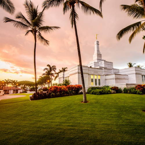 Photo of the Konda Temple on a green hill surrounded by palm trees.