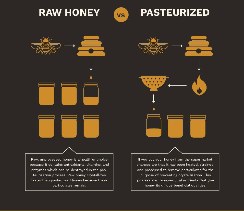 Beekeeping for beginners: Why Keep Bees?