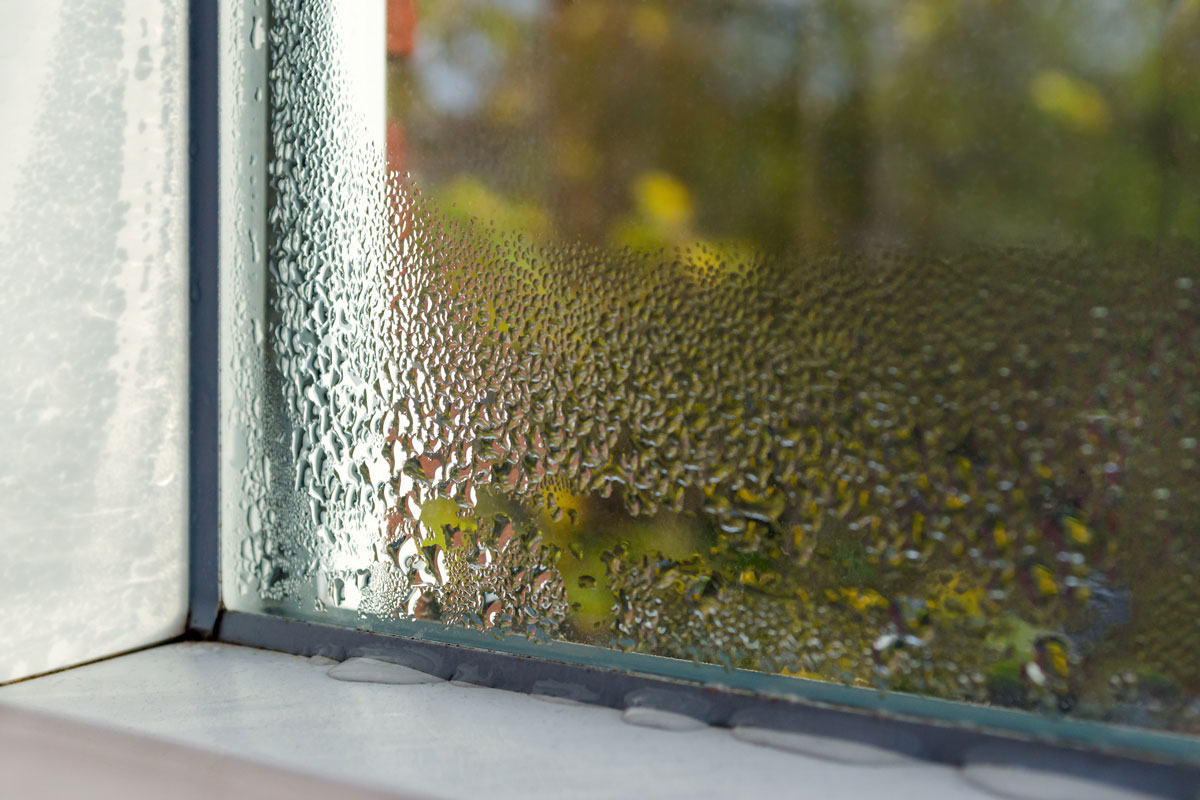 Température et taux d'humidité dans la maison