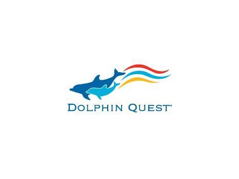 30 Minute Dolphin Encounter