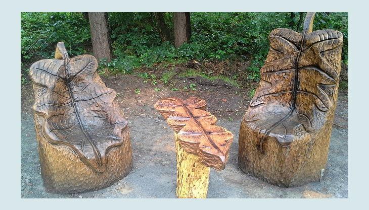 wildpark dünnwald waldsessel mit blatt