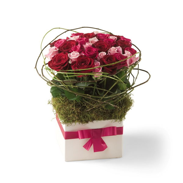 Sweet Celebrations_flowers_delivery_interflora_nz