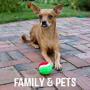 Family & Pets