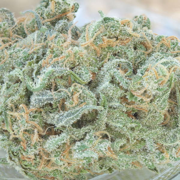 Strain Reviews - Our Top 15 Favorite Flavors Right Now