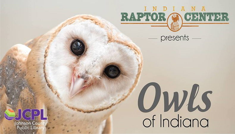 Owls of Indiana