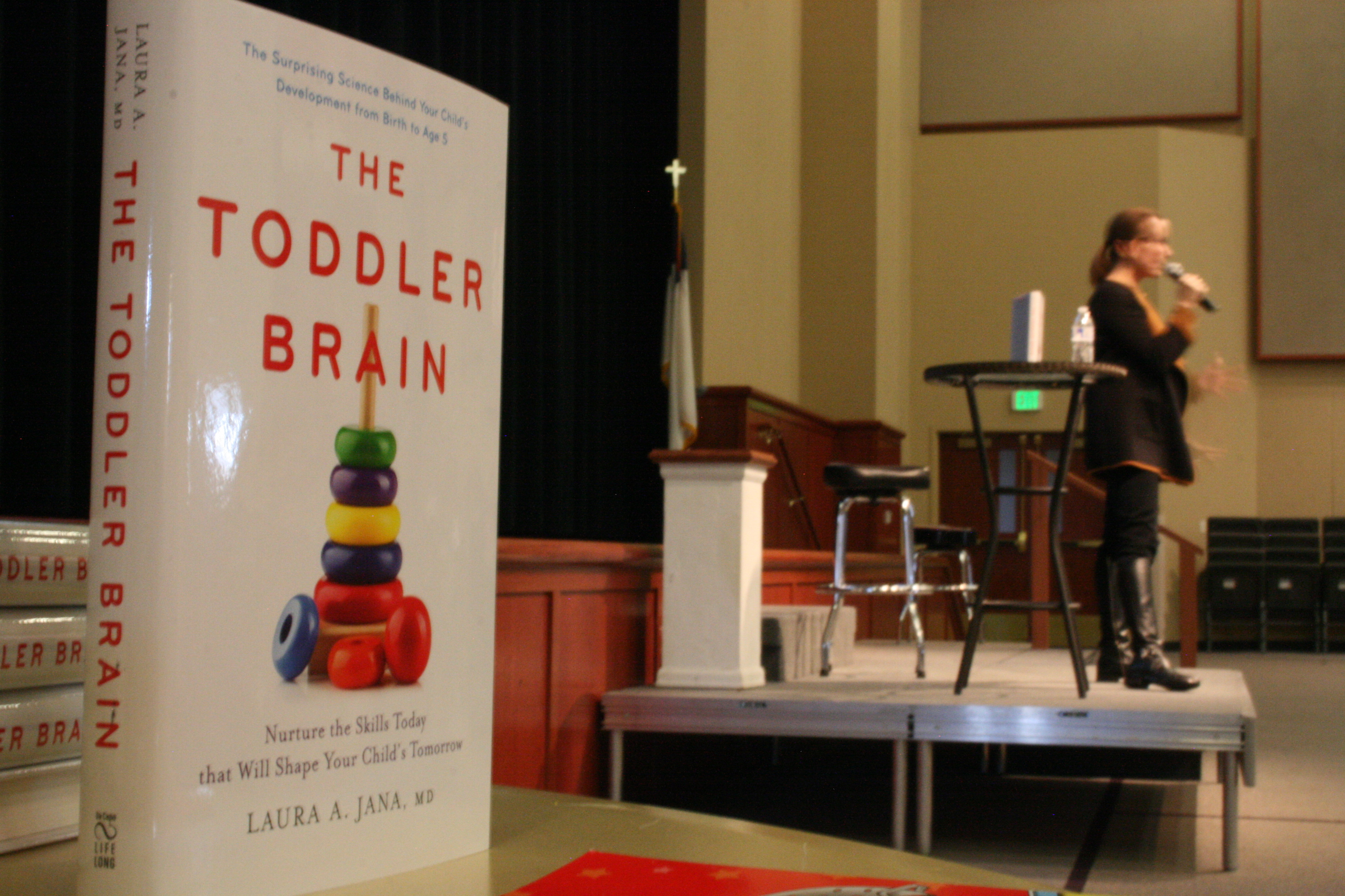 The Toddler Brain Book