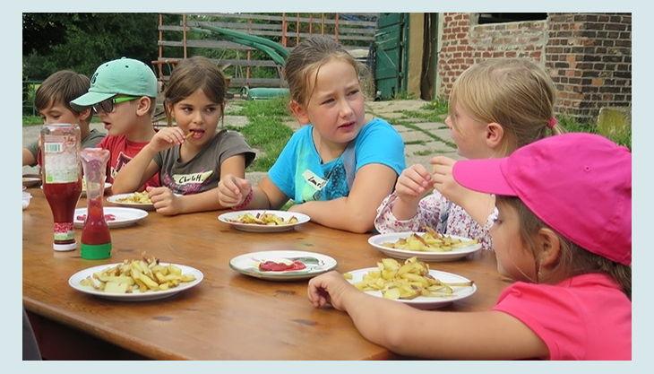 lernbauernhof schulte tigges kartoffeln