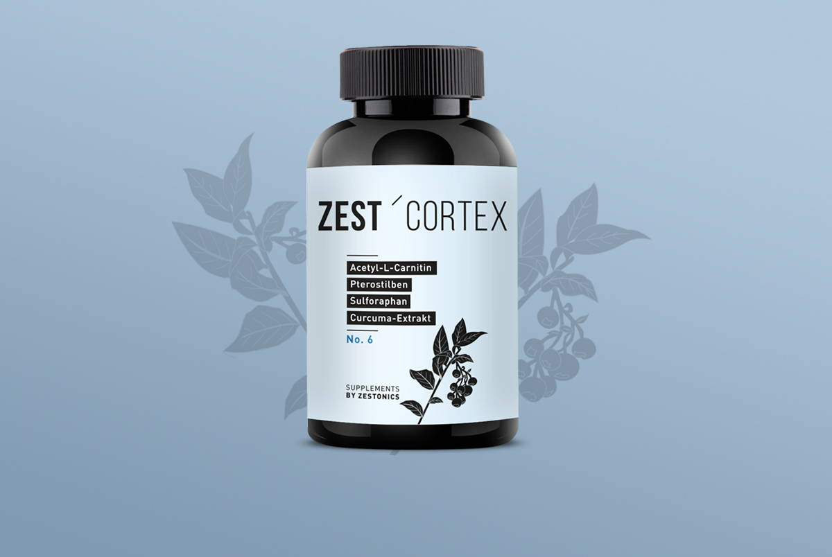 zestonics zest'cortex