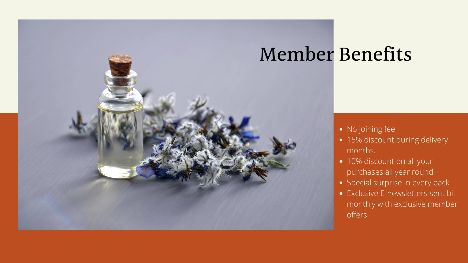 Wiltija Essential Oils Club membership benefits