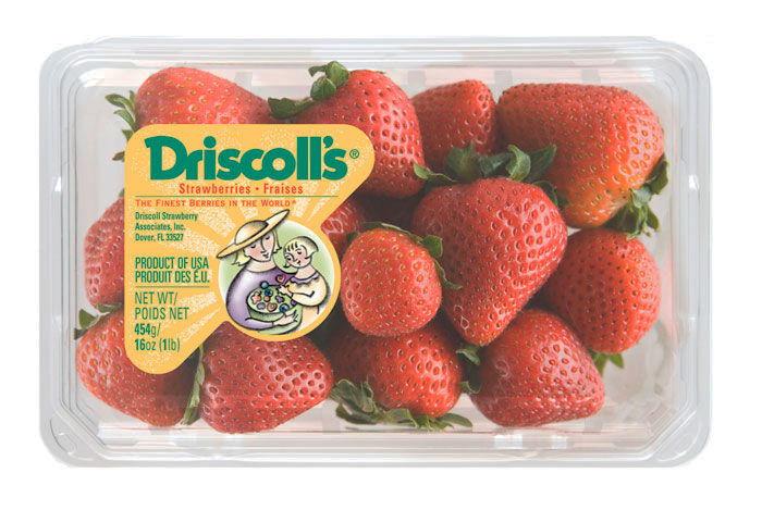 02 15 13 driscolls 4