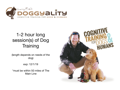 Doggyality Dog Training