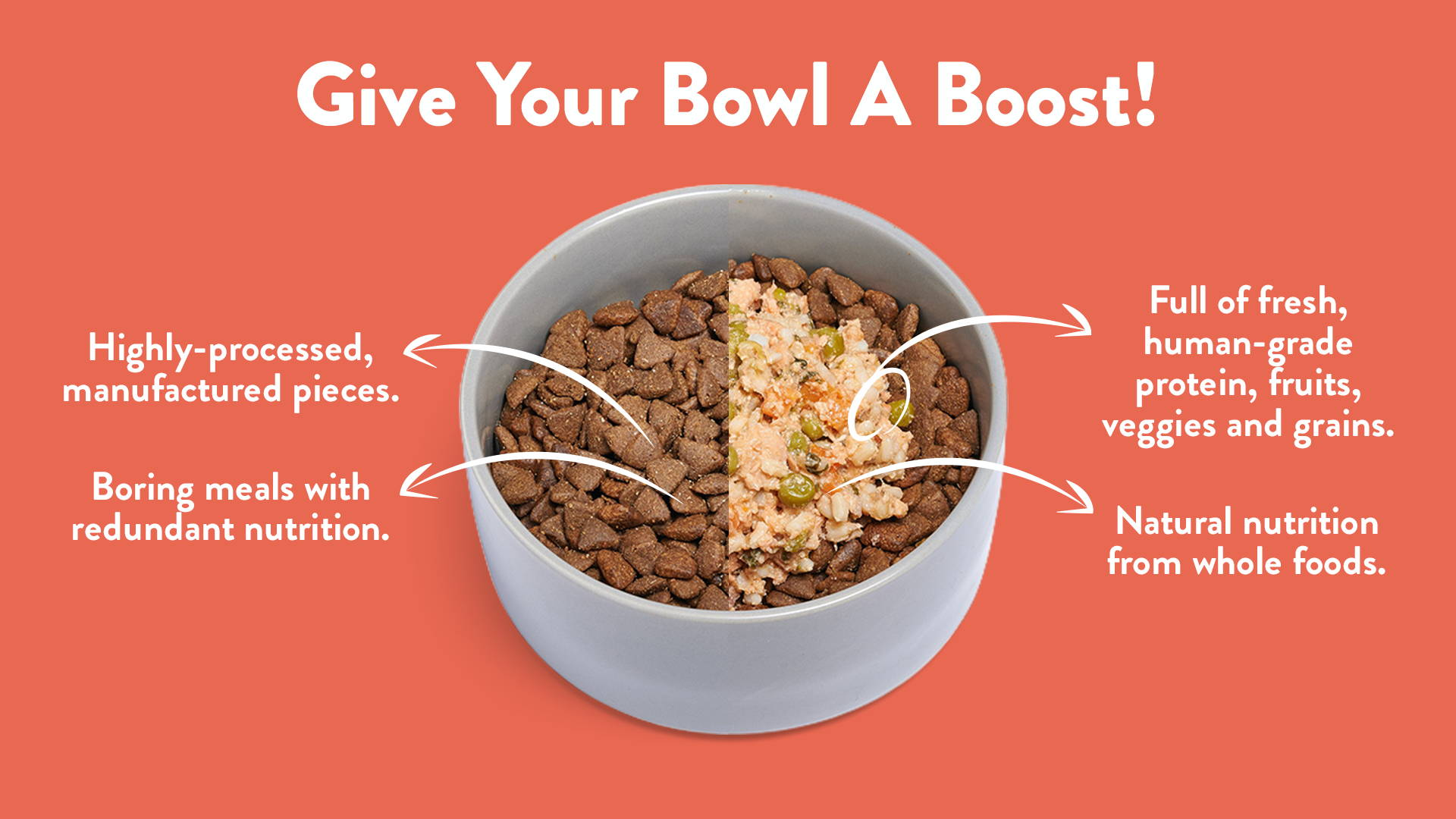 A bowl of kibble with a healthy, Portland Pet Food Company dog food topper