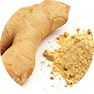 fastblast daily essentials contain organic ginger