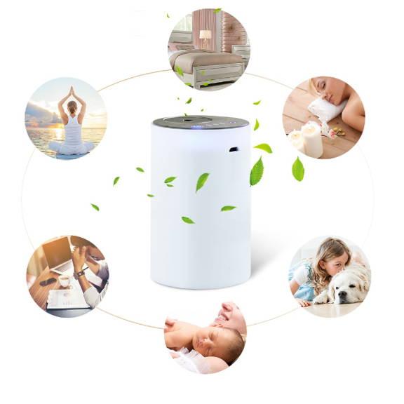 Diffuseur d'huile essentielle nébuliseur rechargeable et portable utilisation