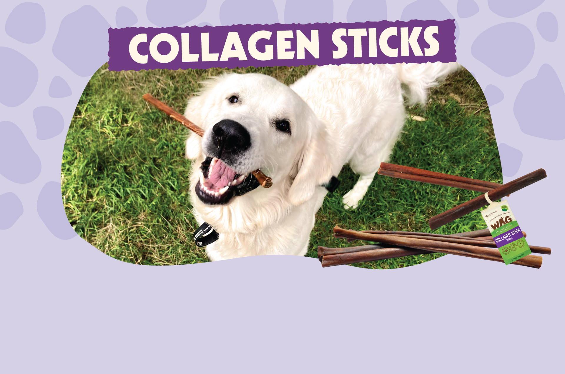 collagen sticks