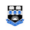 Buller High School logo