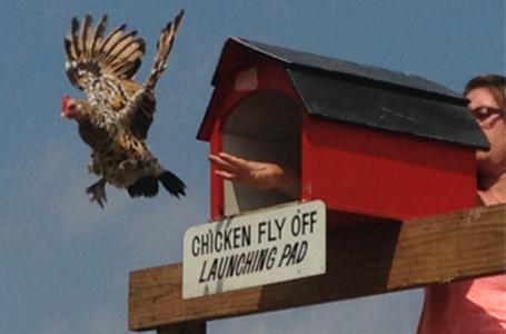 elkhart-co-poultry-club-sponsor