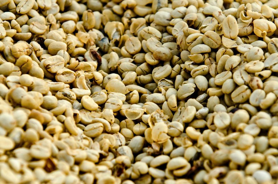 Guatemala Coffee Region