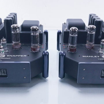 Snapper Mono Tube Power Amplifier