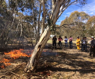 What Does Community-led Recovery Look Like? A Case Study from the Carwoola 2017 Bush Fire