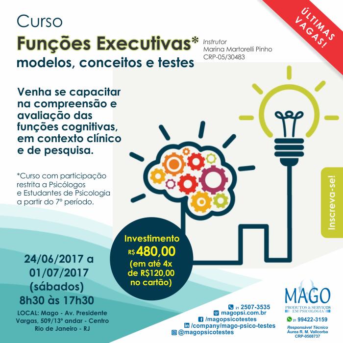 Funções Executivas: modelos, conceitos e testes