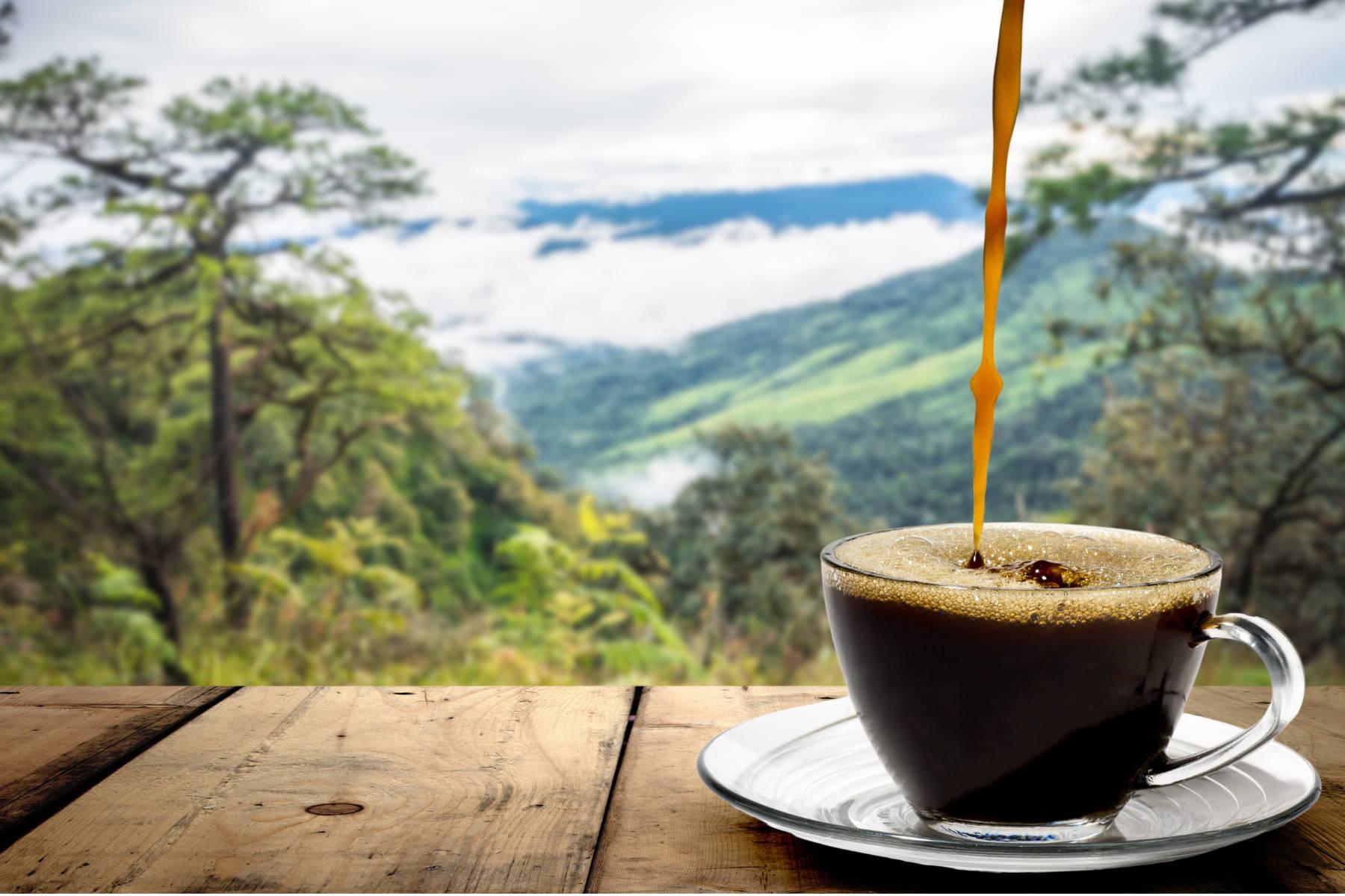 café au cbd bio la chanvre cbd paris