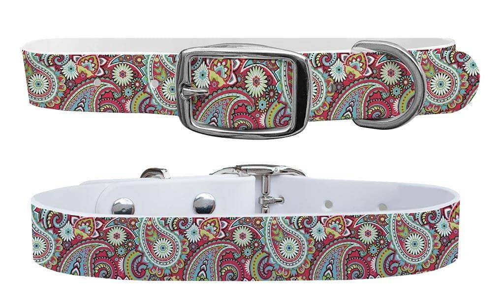 Paisley c4 dog collar