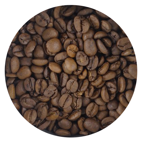 BeanBear Brazil coffee beans