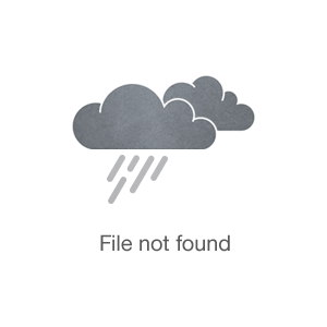 Photo of Sandra Alexander