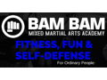Bam Bam Mixed Martial Arts Academy 6-Month Membership