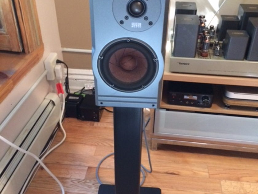 System Audio SA-2K Monitor Price reduced for quick sale
