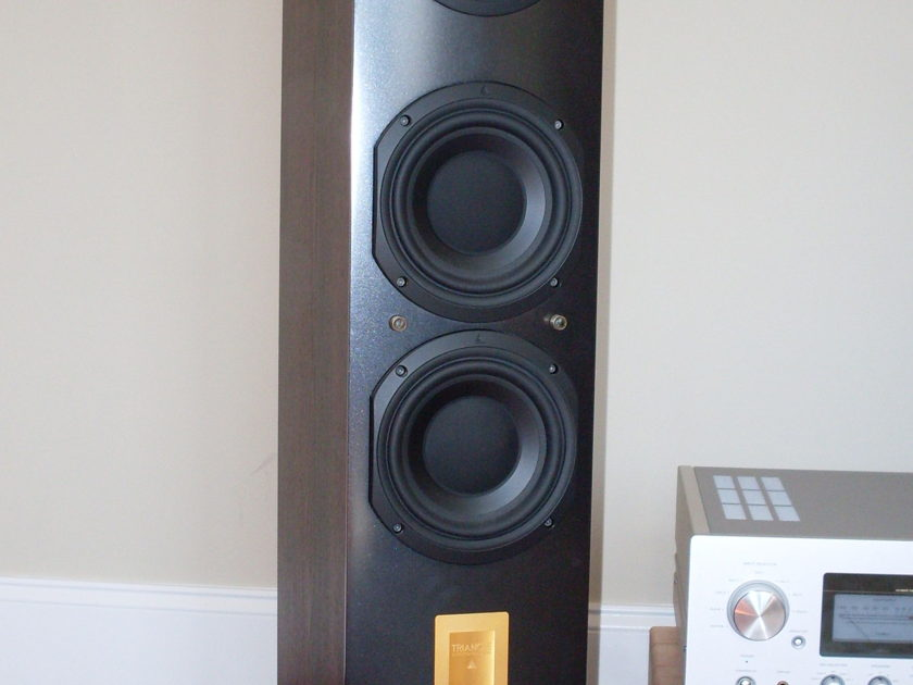 Triangle Antal ESW Speakers