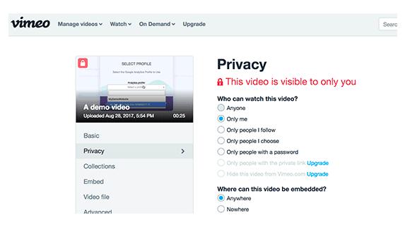 Vimeo Privacy Controls