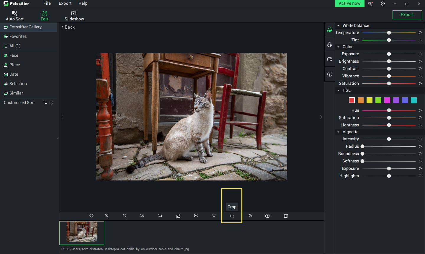 below the photo are Fotosifter's crop tools