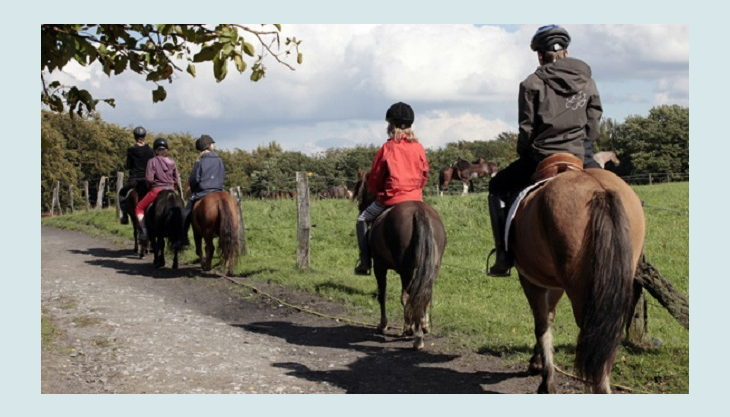 ponnyland reiten am feldweg