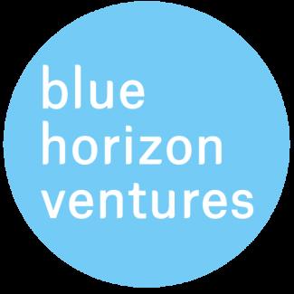 Bhv logo blue