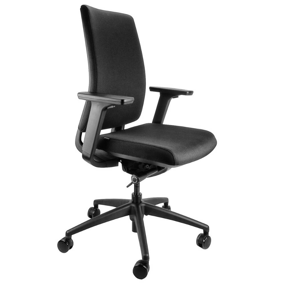 como ergonomic office chair for lower back pain